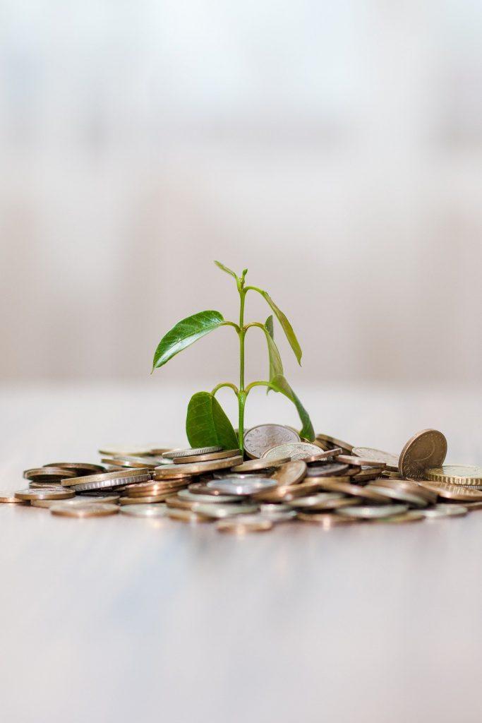 Investitionen. Es kostet Geld, ein Unternhmen zu gründen – auch bei Poda Zaun